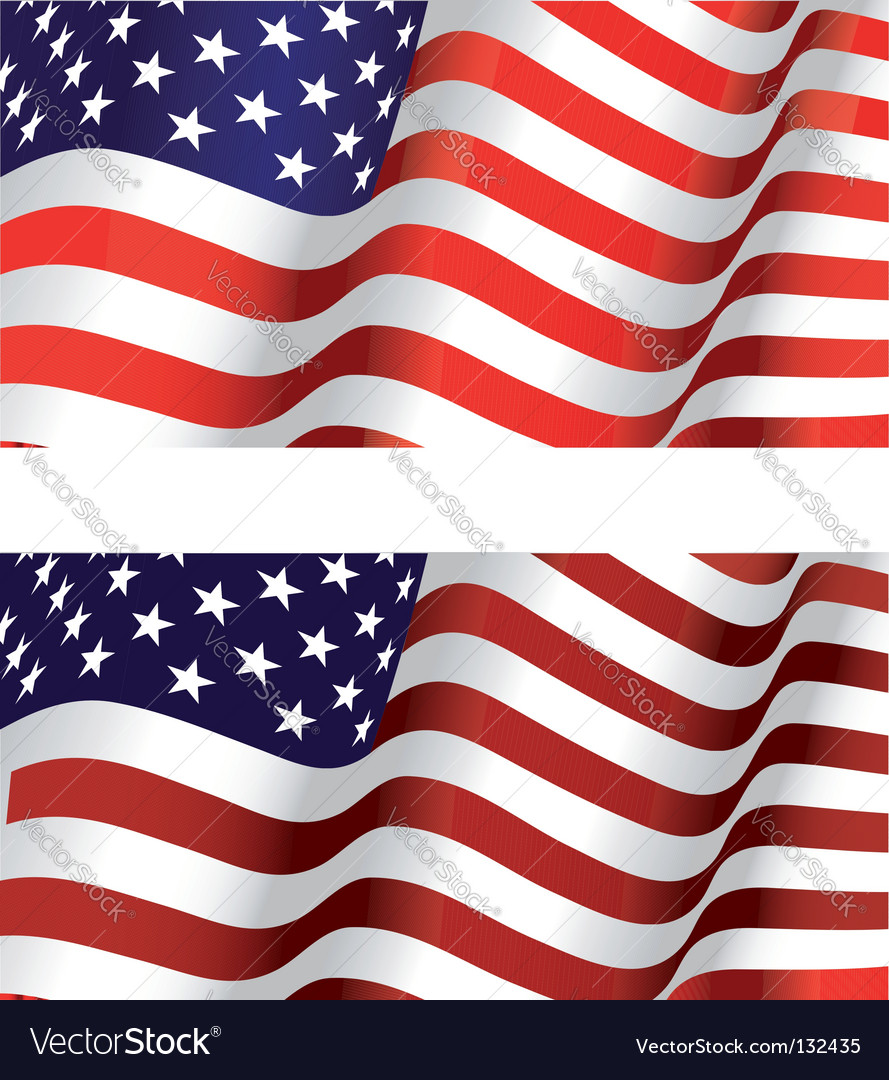 Flag of USA vector image