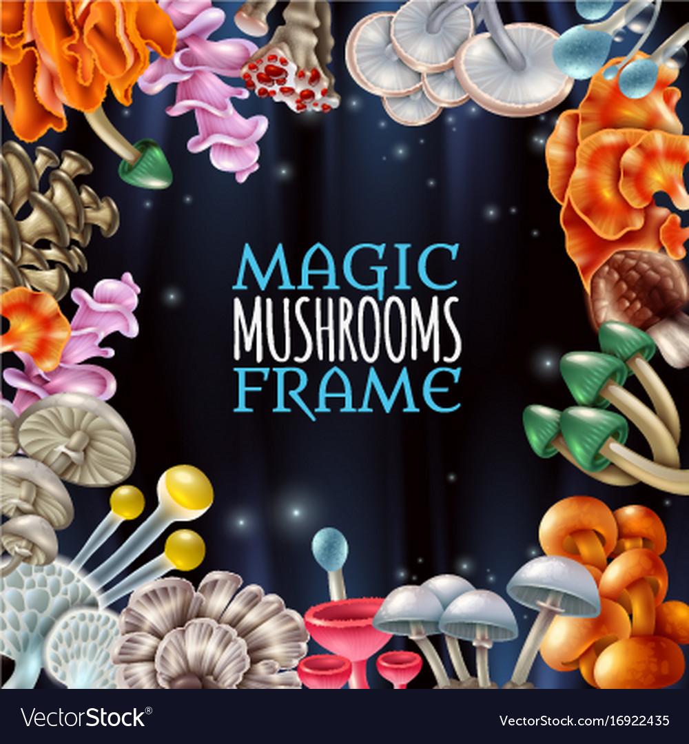 Magic mushrooms frame background Royalty Free Vector Image