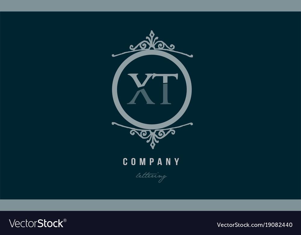 Xt x t blue decorative monogram alphabet letter vector image