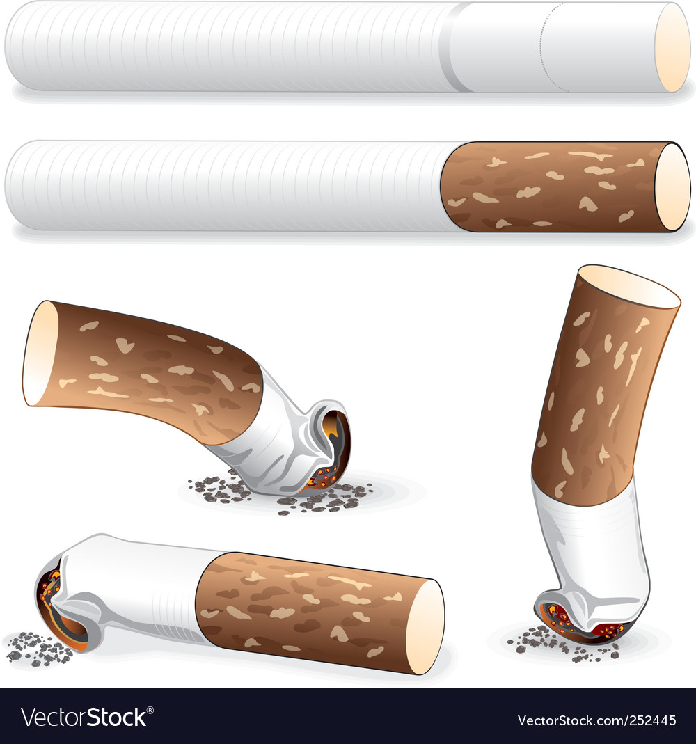 Cigarette butt vector image