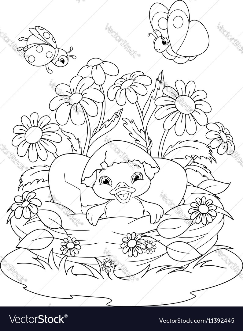 Duckling Coloring Page vector image