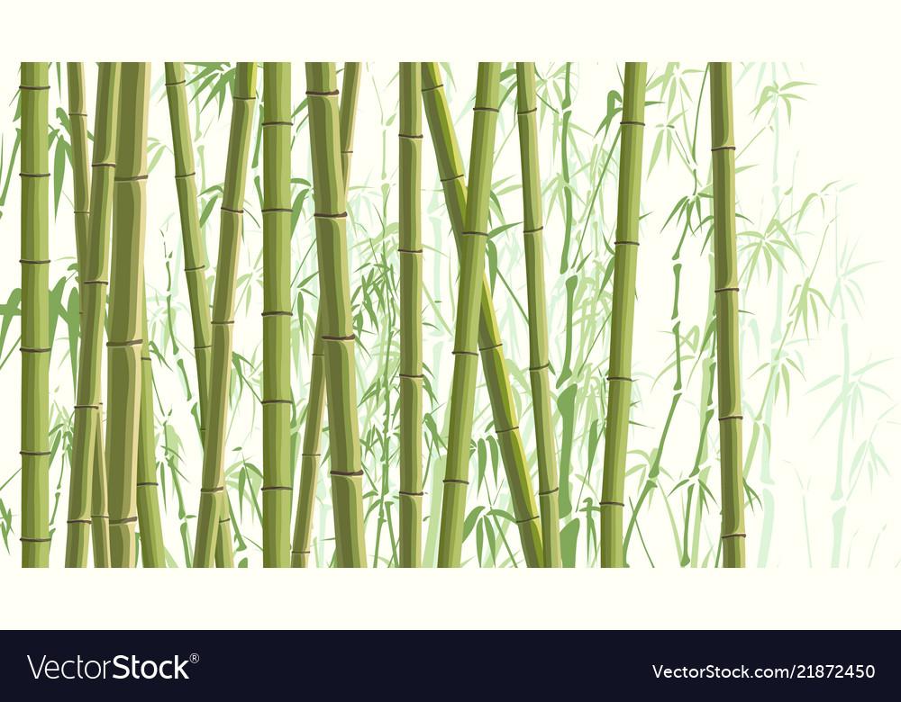Horizontal With Many Bamboos Royalty Free Vector Image