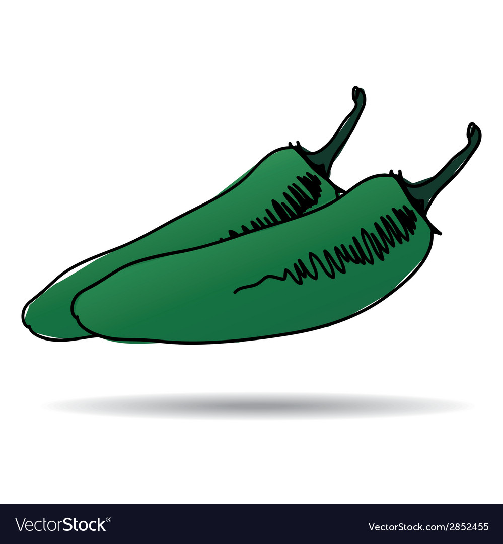 Freehand drawing jalapeno icon