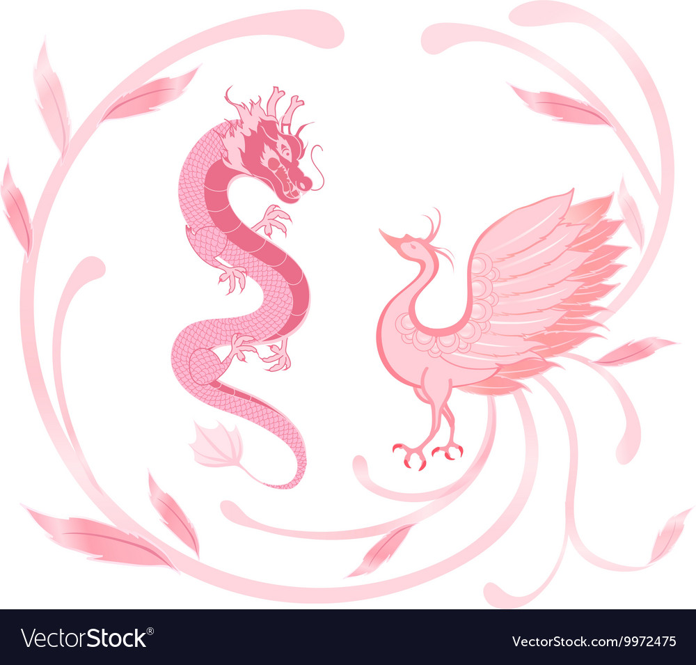 Pink Dragon And Phoenix For Symbolism In Chinese Vector Image