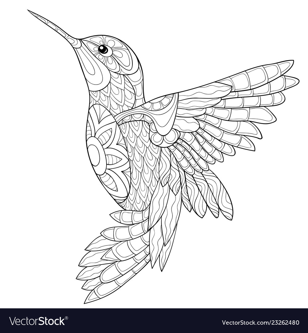 Coloring Book Hummingbird
