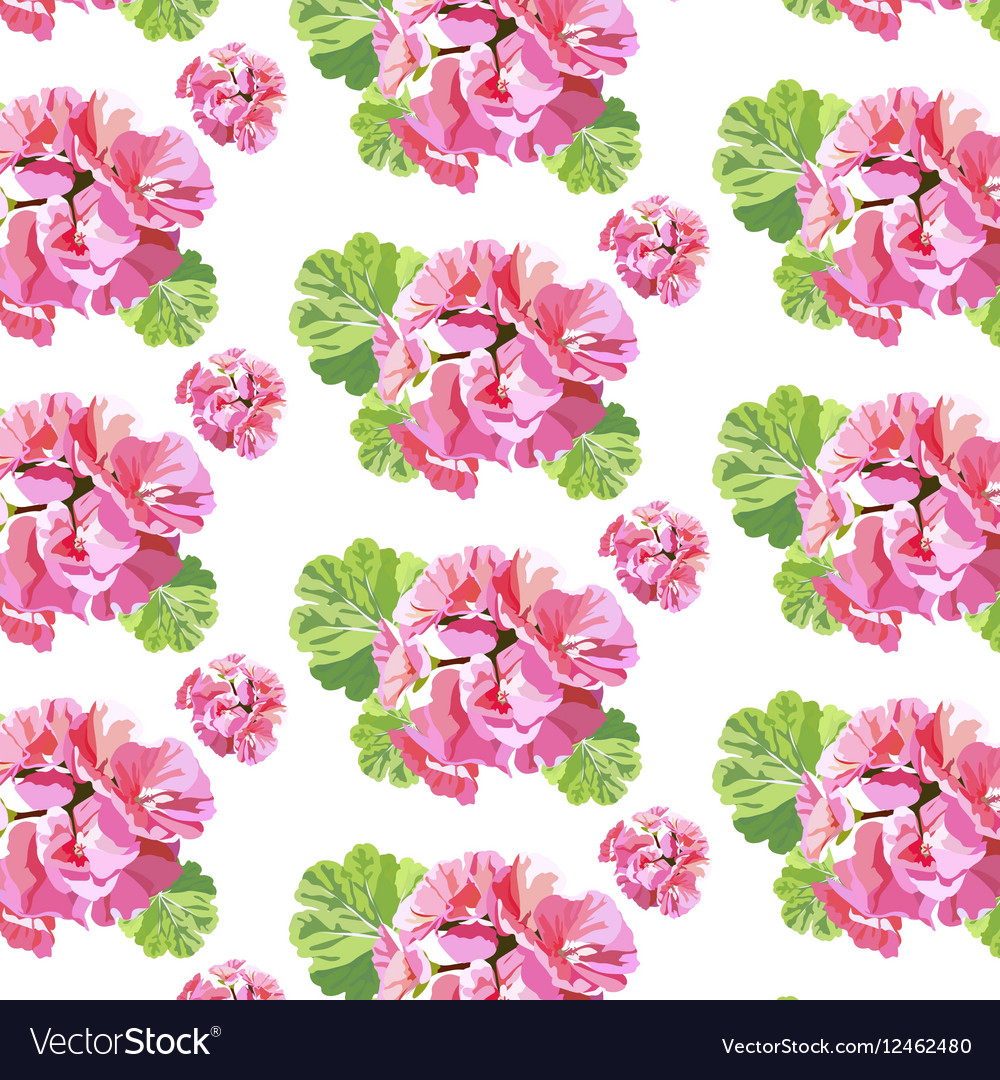 Delicate Pink Geranium Flowers Pattern Royalty Free Vector