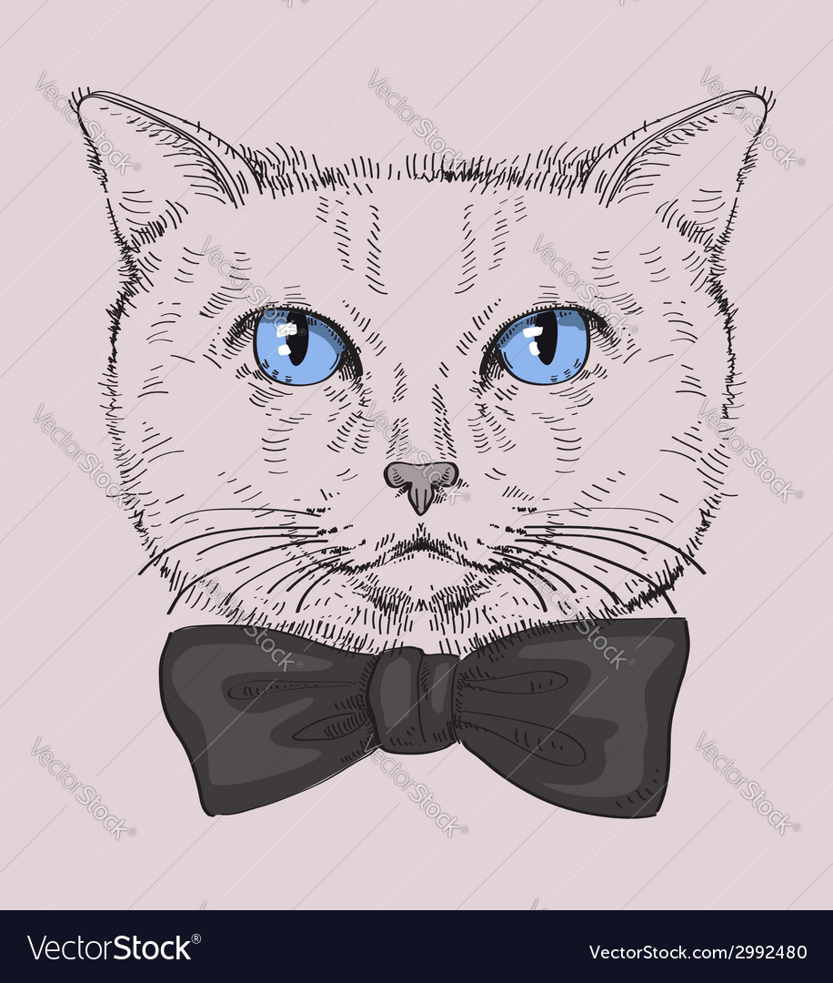 Hipster Cat vector image