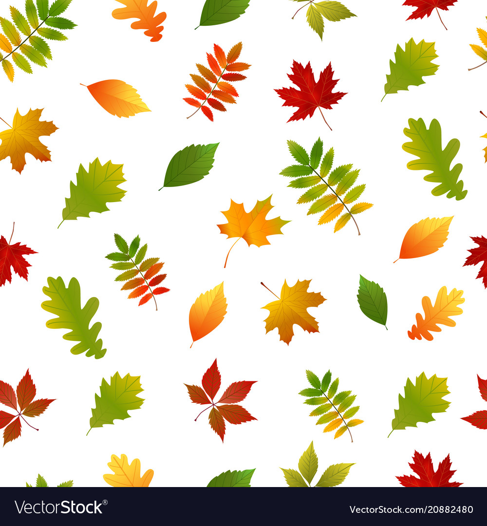 Seamless pattern with set autumn yellow green red