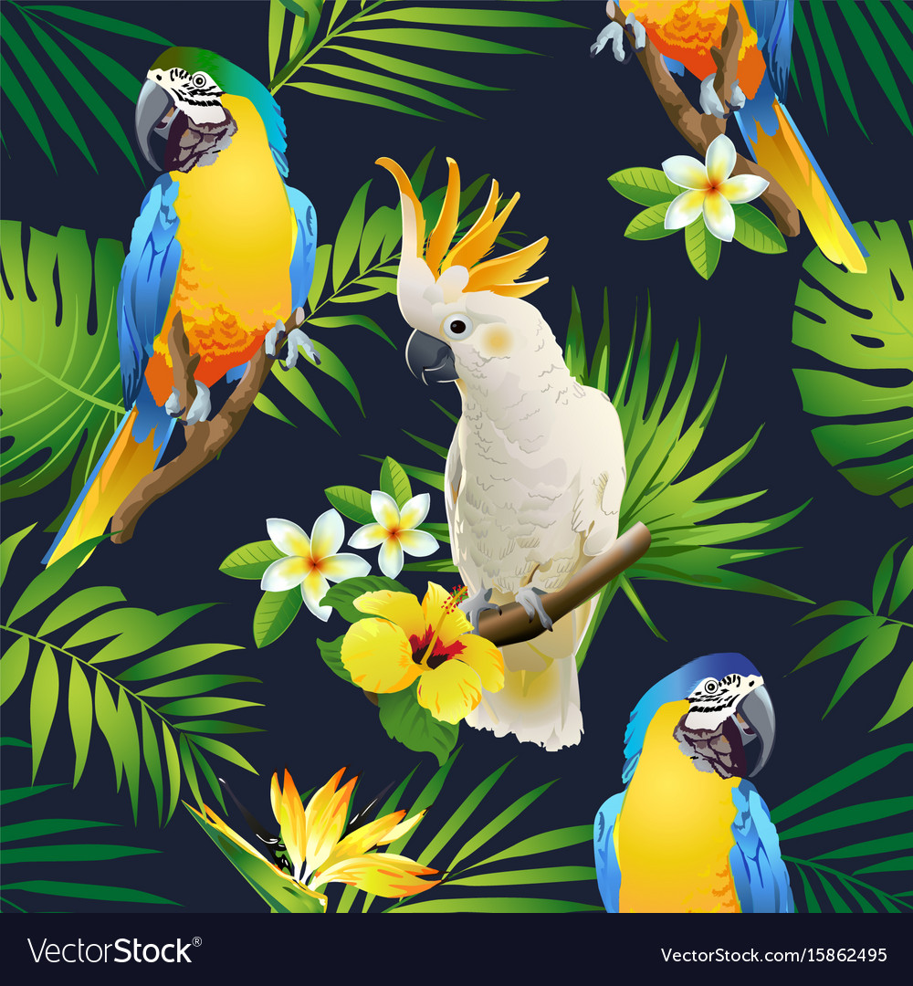 Seamless pattern of parrots cockatoo on the tropic