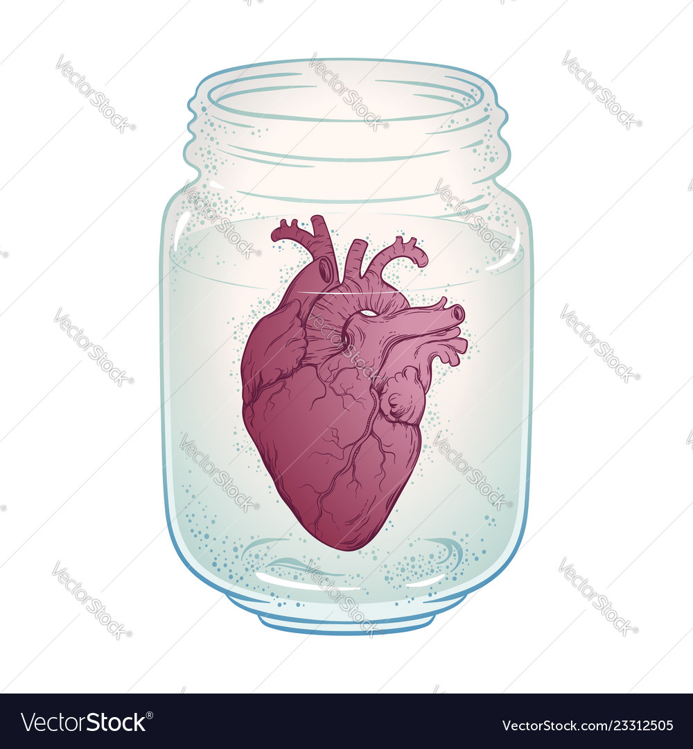 Human heart in glass jar isolated sticker print