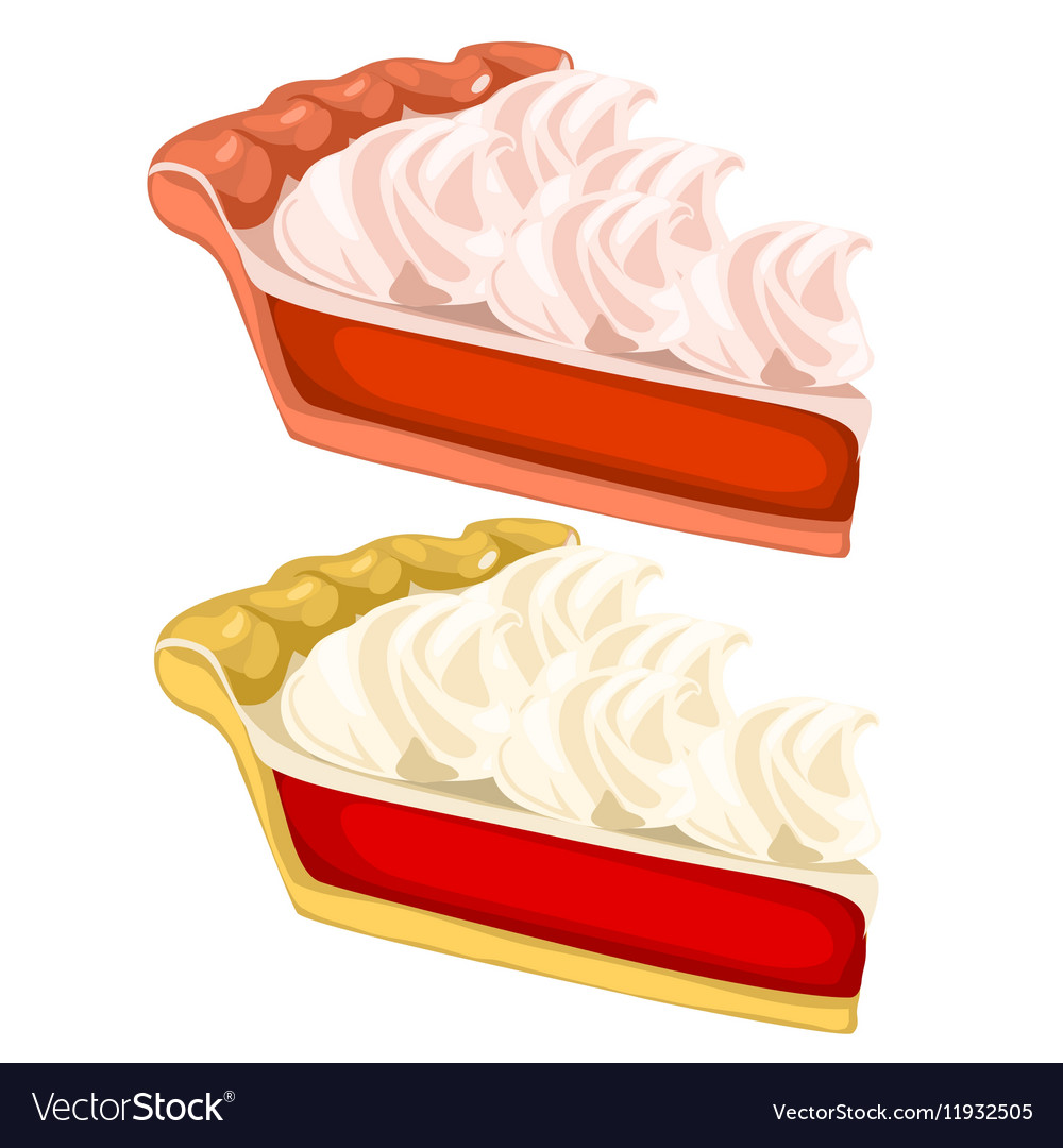 Two delicious pieces of cake with cream vector image
