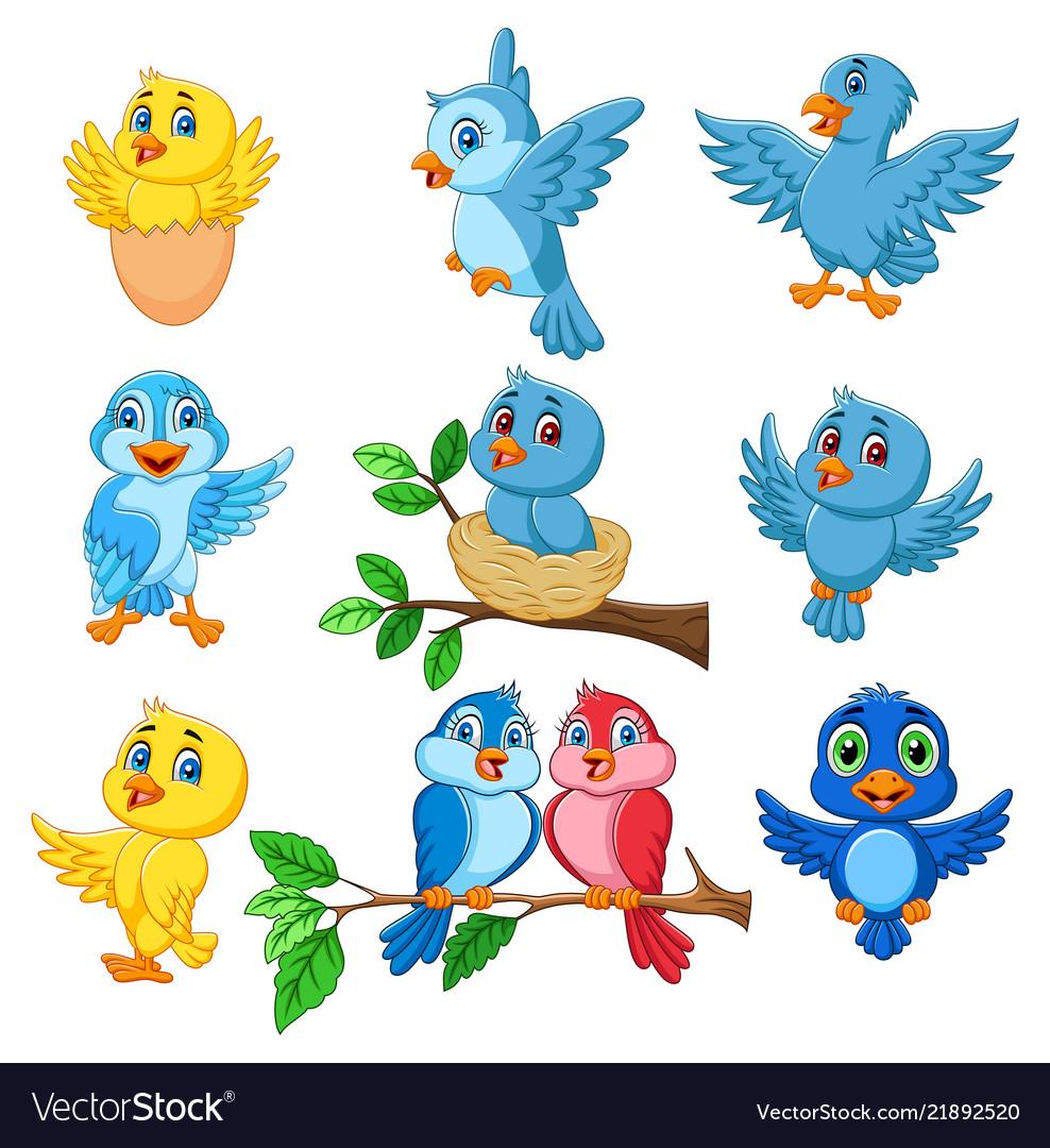 Cartoon happy birds collection set