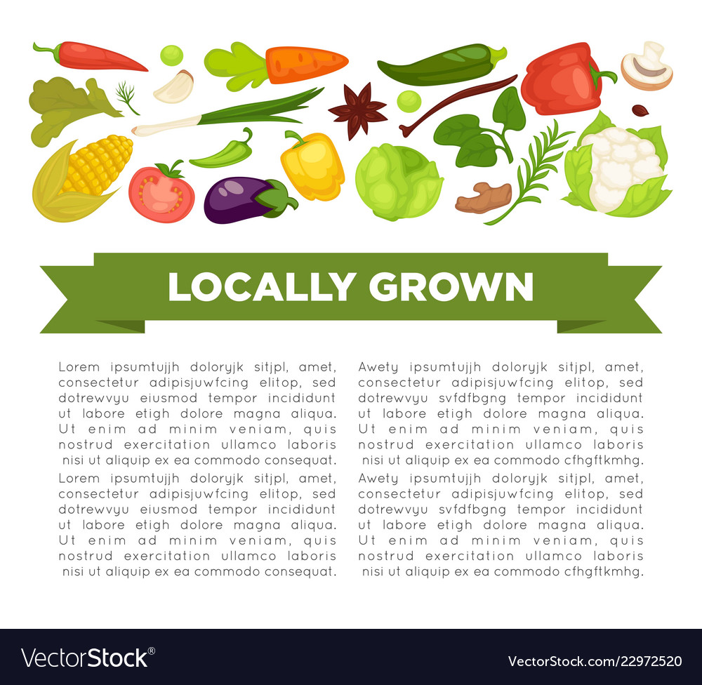 Organic vegetables food poster background template