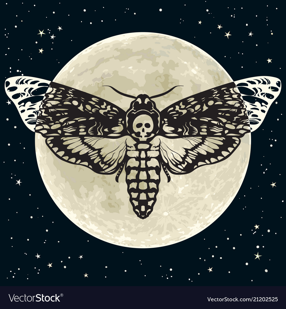 Death head hawkmoth on the full moon and night sky