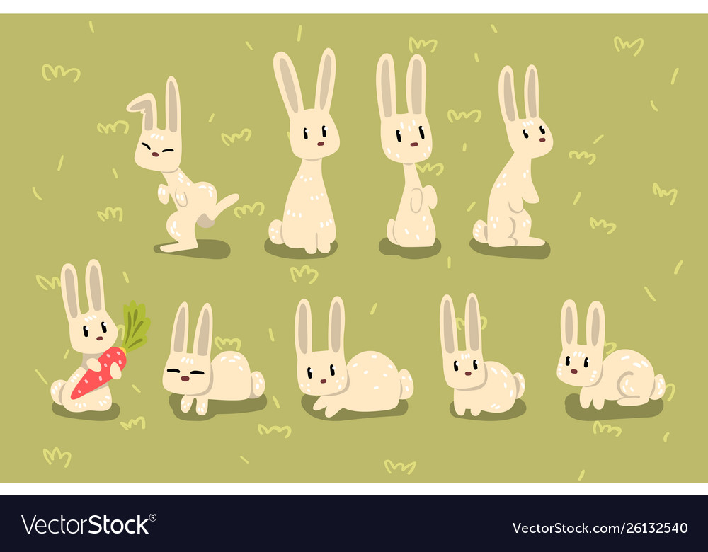 Flat set small bunny in different poses