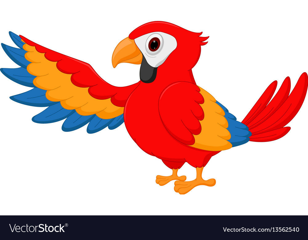 Macaw bird cartoon waving