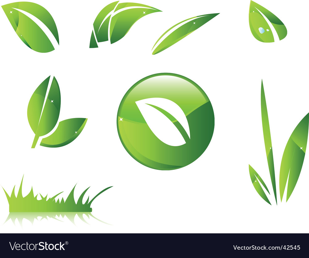 Leaves icons vector image
