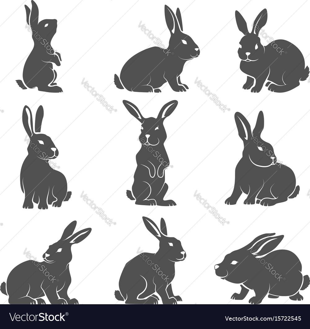 Set of rabbit icons isolated on white background