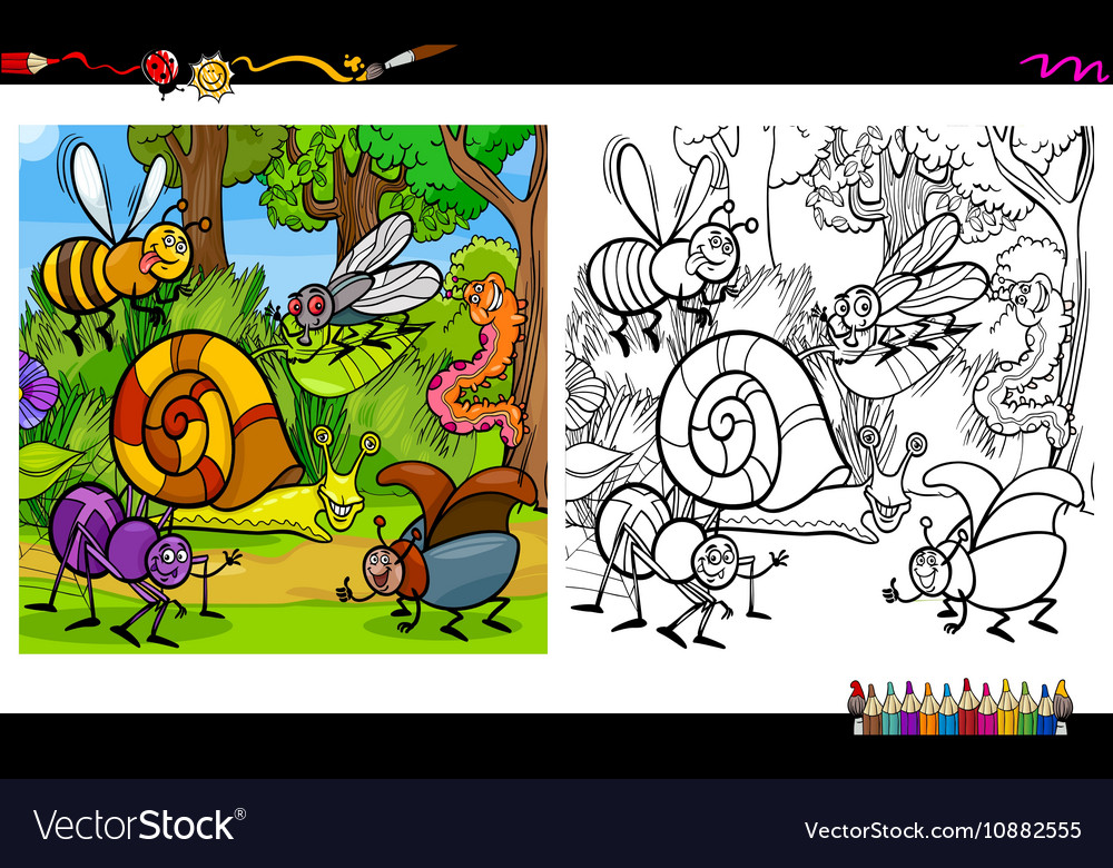Insect characters coloring page vector image