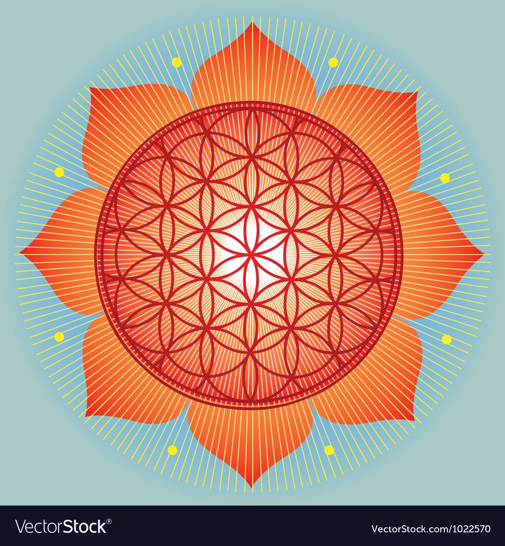 Lotus Flower Of Life Vector