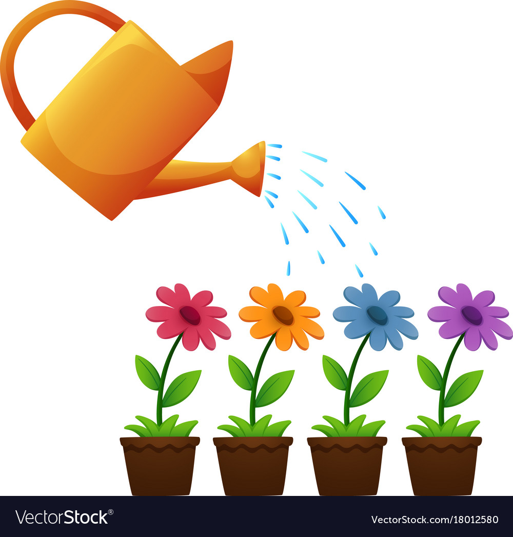 Watering Can And Flowers In Garden Vector Image