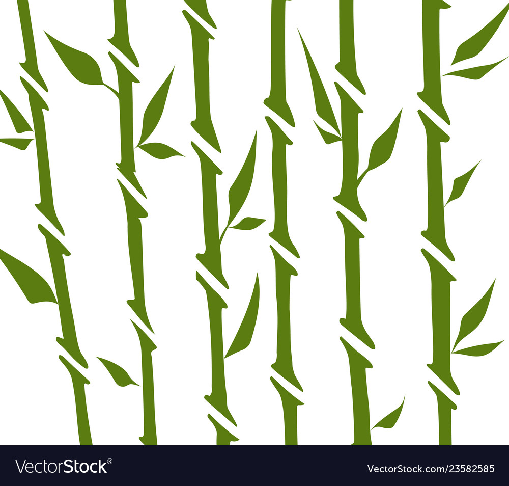Bamboo forest set nature japan china plant