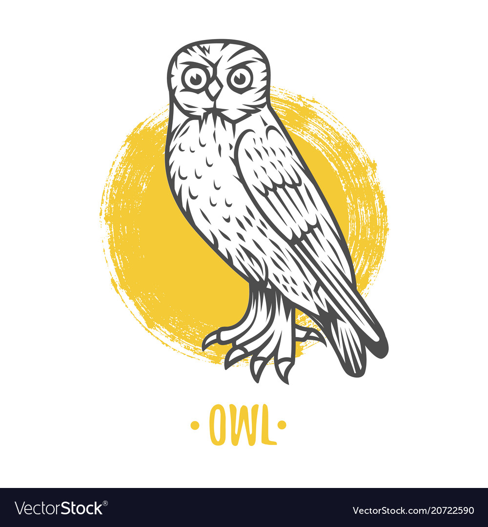 Heraldic shields with owl