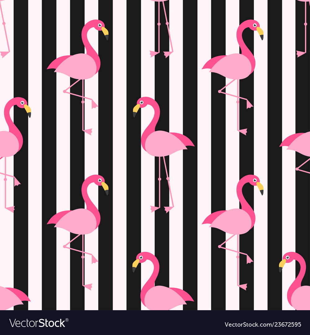 Pattern with flamingo birds on background