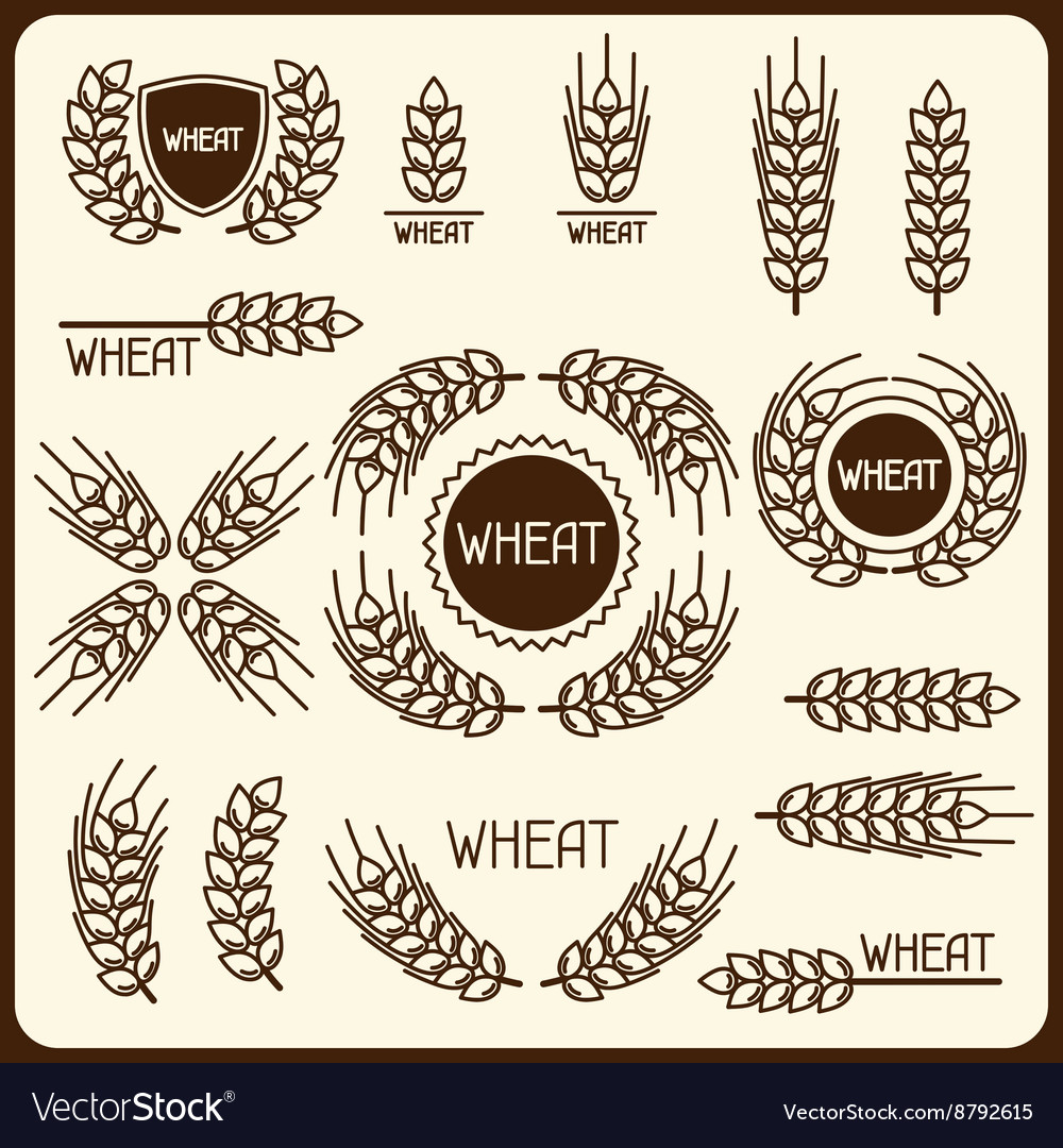 Design elements with wheat Agricultural image