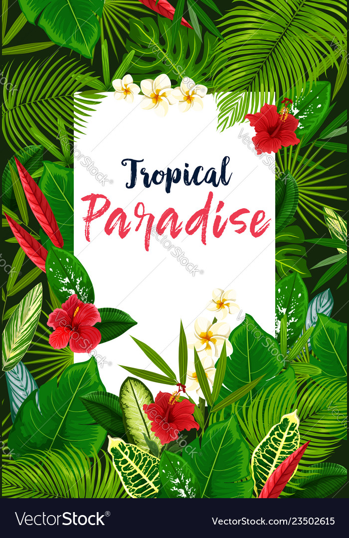 Exotic flowers and tropical leaves