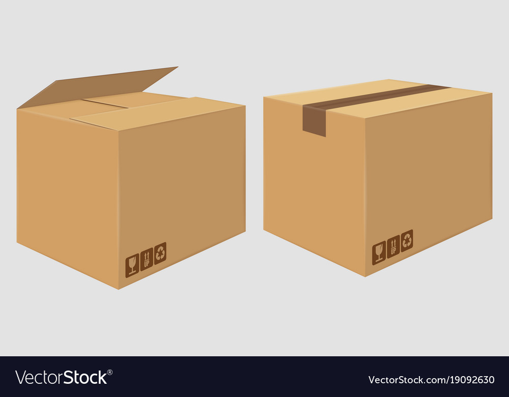 Cardboard close box side view package design vector image