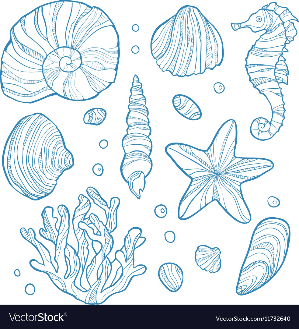Set seashell coral seahorse starfish and rocks vector image