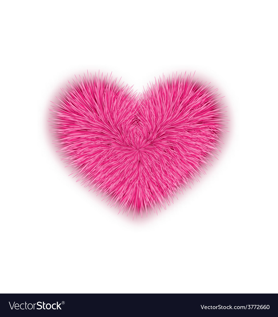 Fur pink heart for Valentines Day isolated on