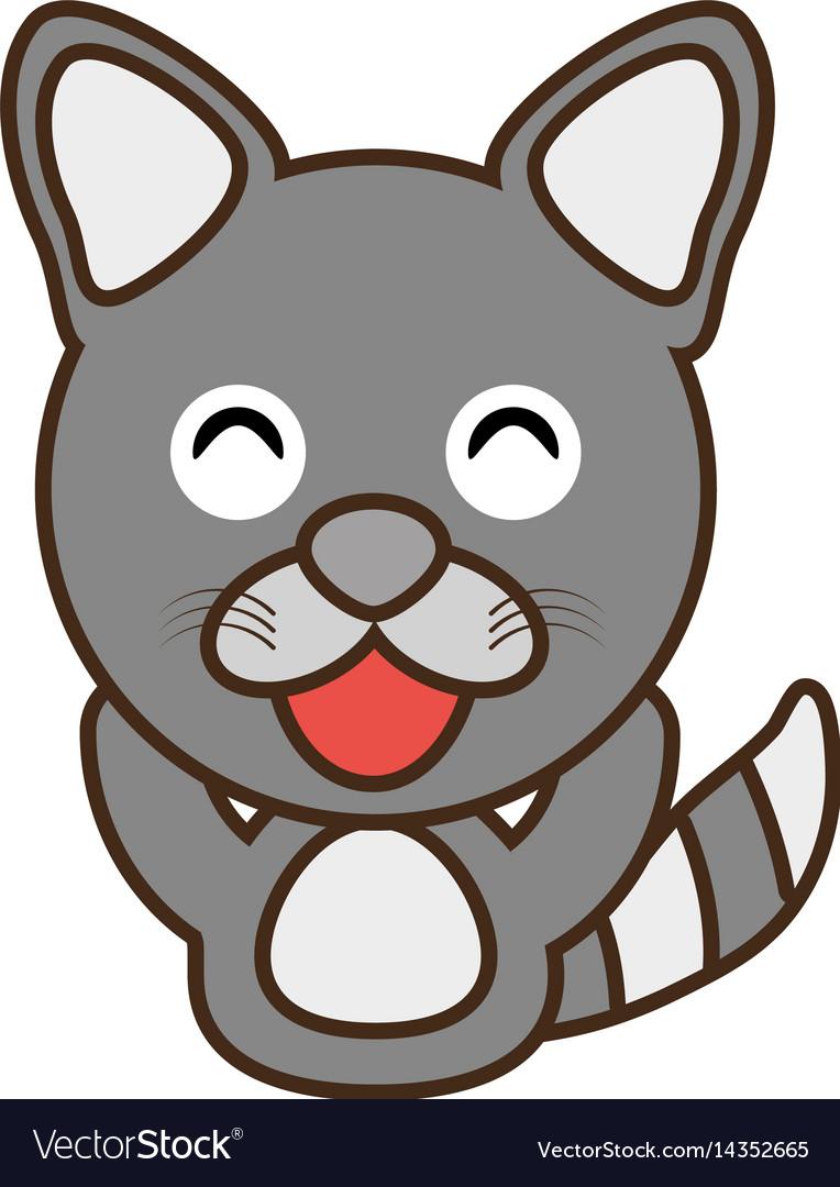 Raccoon baby animal funny image vector image