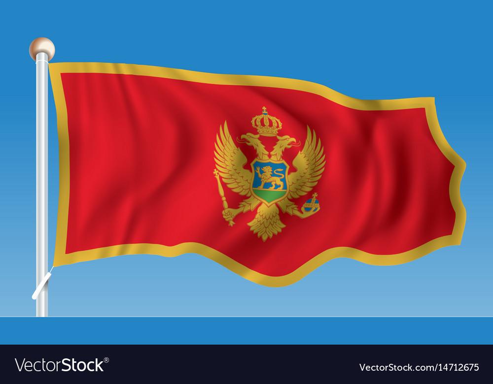 Flag of montenegro vector image