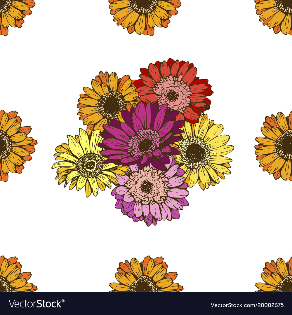 Seamless pattern with daisies flower on white vector image izmirmasajfo