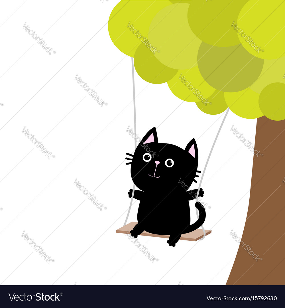 Cat ride on the swing green tree cute fat
