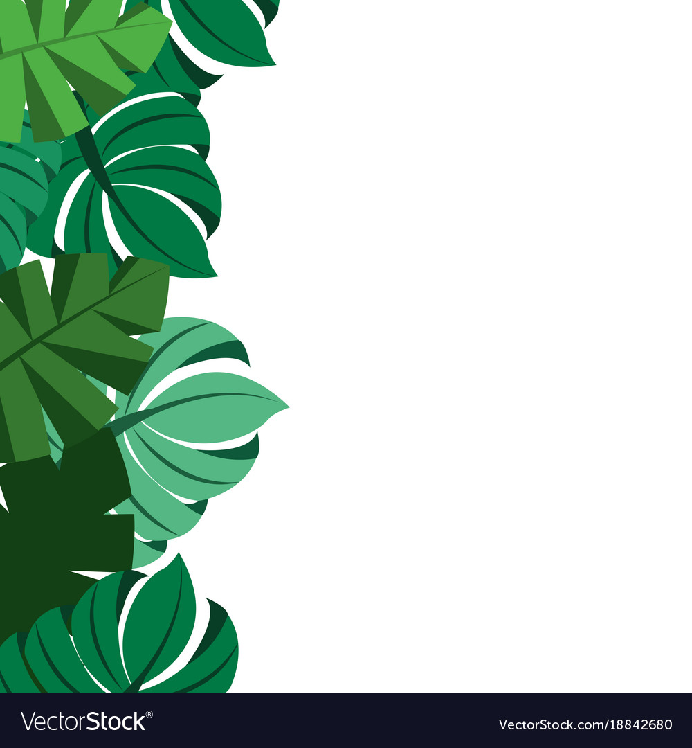 Tropical Leaves Palm Tree Border Decoration Vector Image ✓ free for commercial use ✓ high quality images. vectorstock