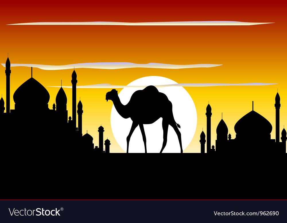 Beauty silhouette of camel trip