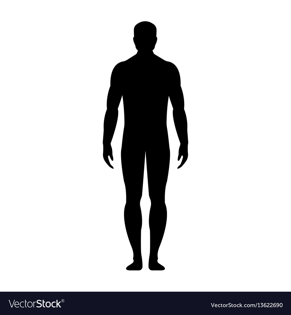 Human Front Side Silhouette Royalty Free Vector Image Find the best free stock images about human silhouette. vectorstock