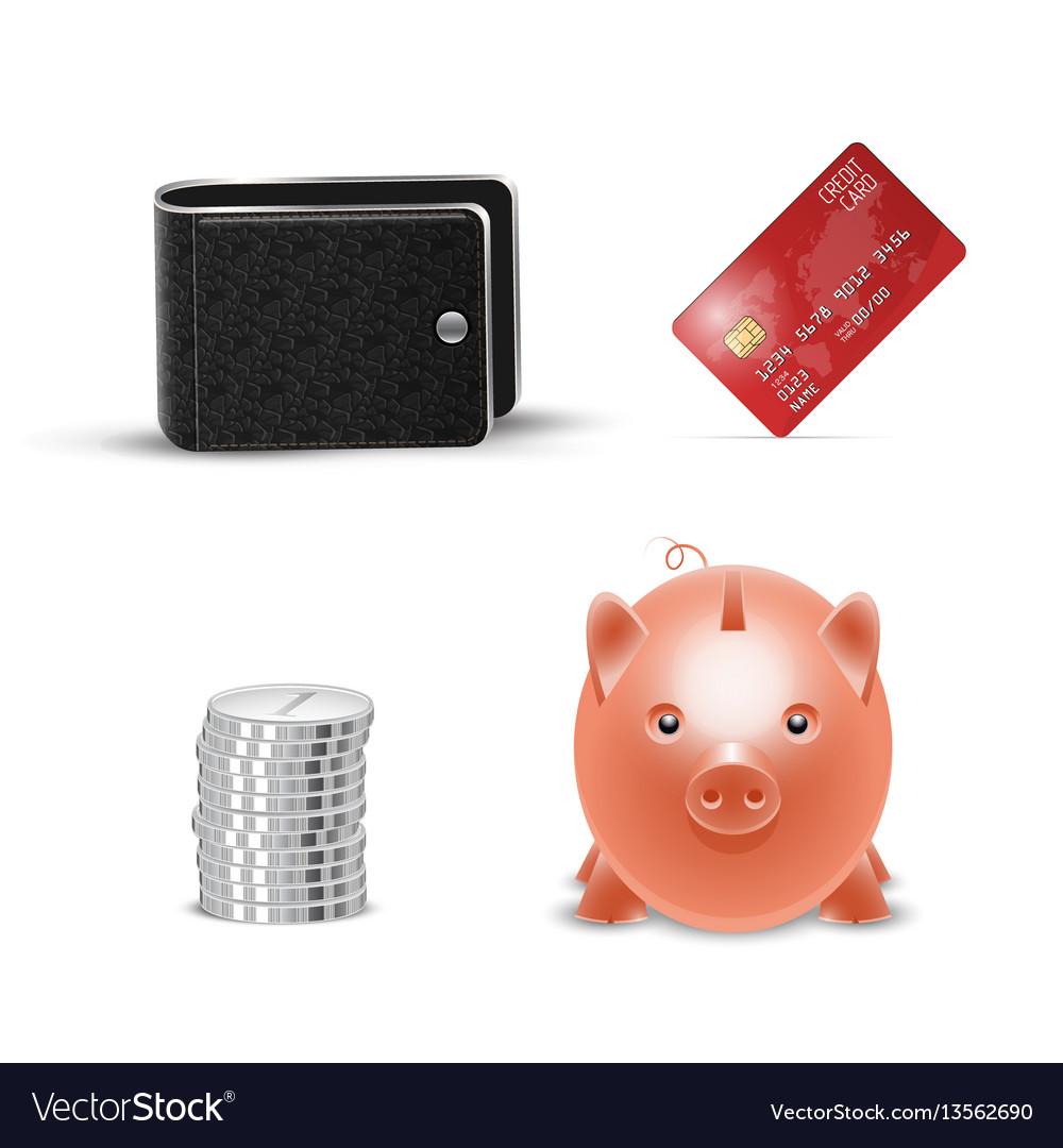 Realistic credit card wallet money