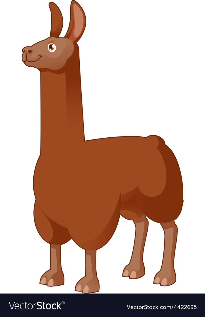 Cartoon Lama vector image