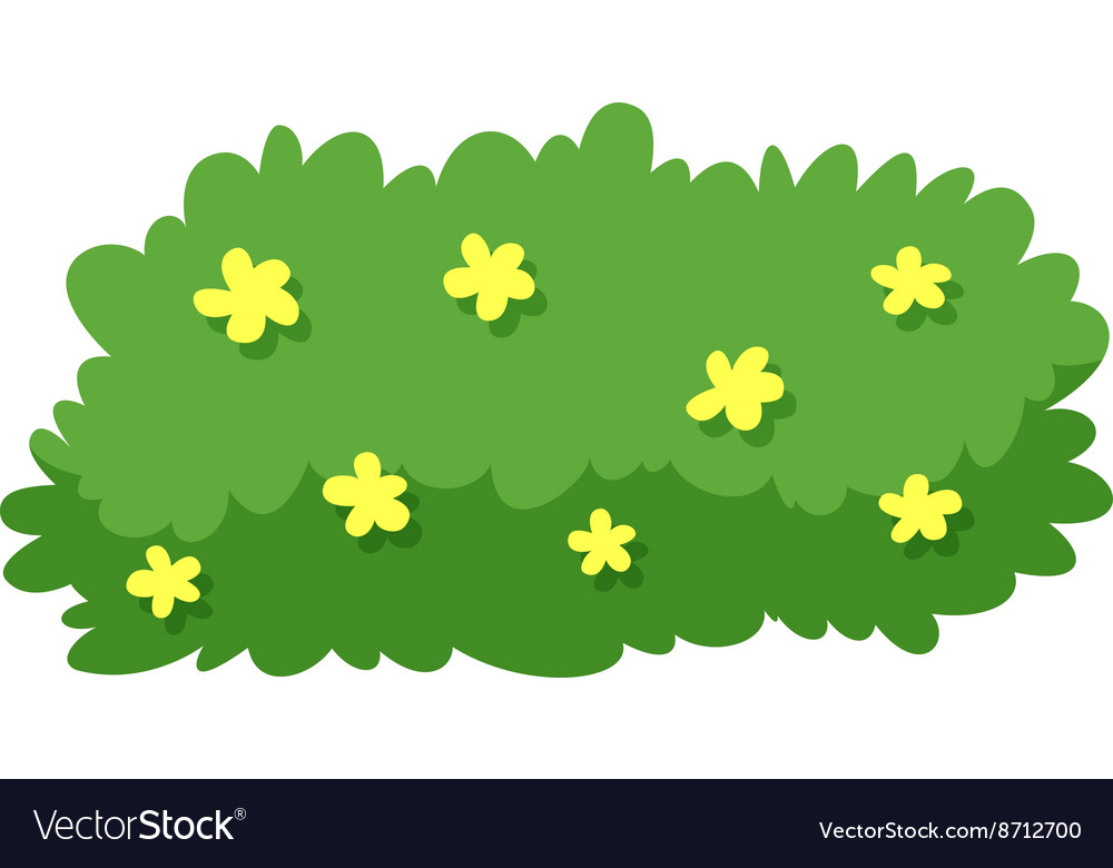 Bush with yellow flowers royalty free vector image bush with yellow flowers vector image mightylinksfo