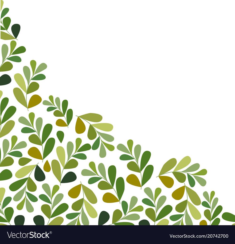 Leaves set isolated on white background