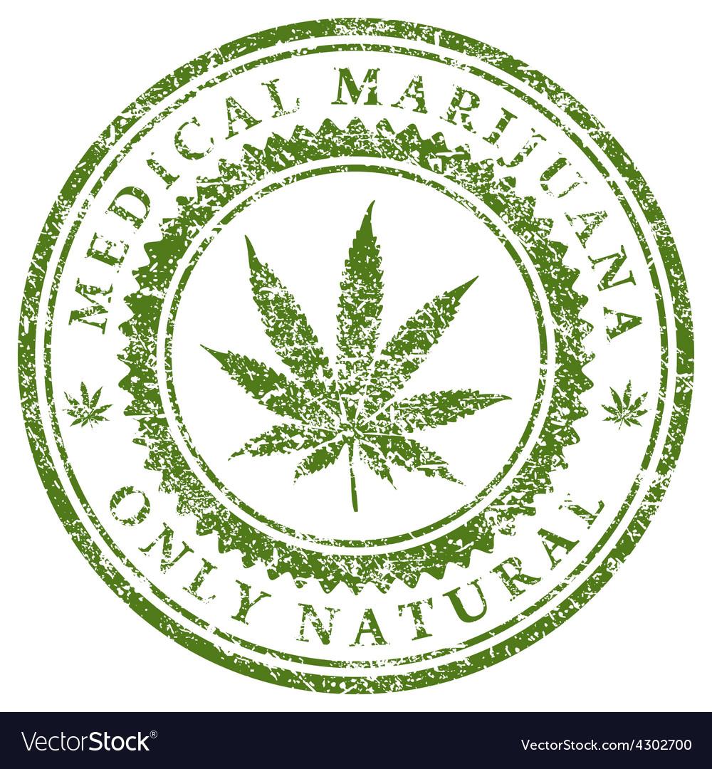 Medical Marijuana vector image