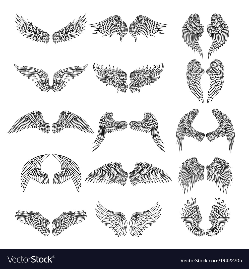 Tattoo design pictures of different stylized wings