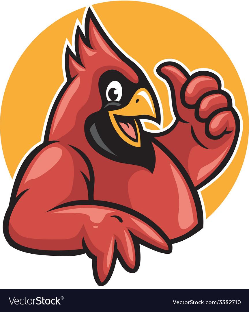 Thumb up cardinal vector image