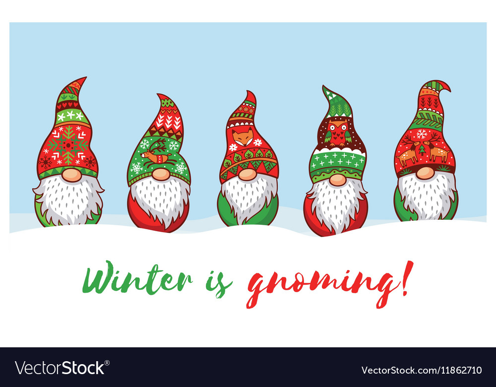 Christmas Gnome.Winter Is Gnoming Card With Christmas Gnomes In