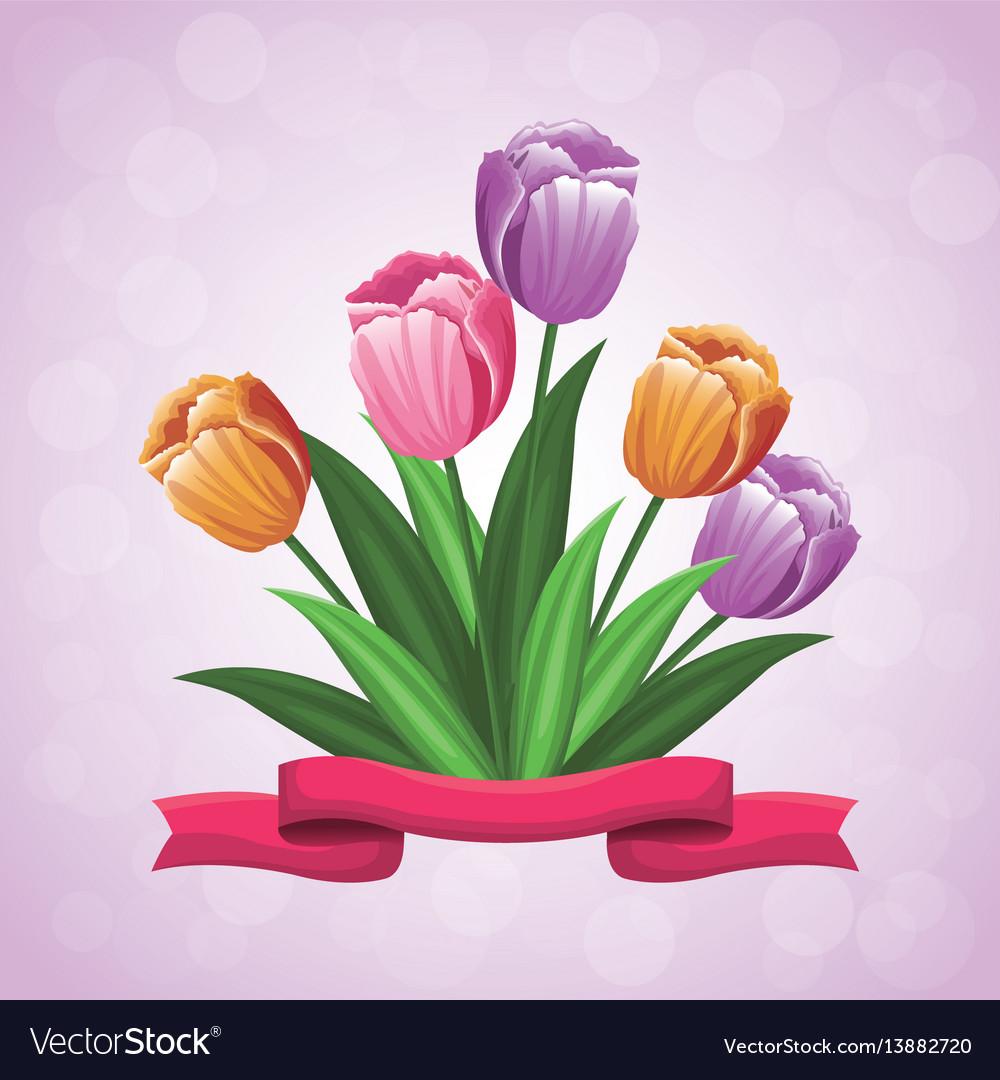Beauty tulips flower ribbon ornament