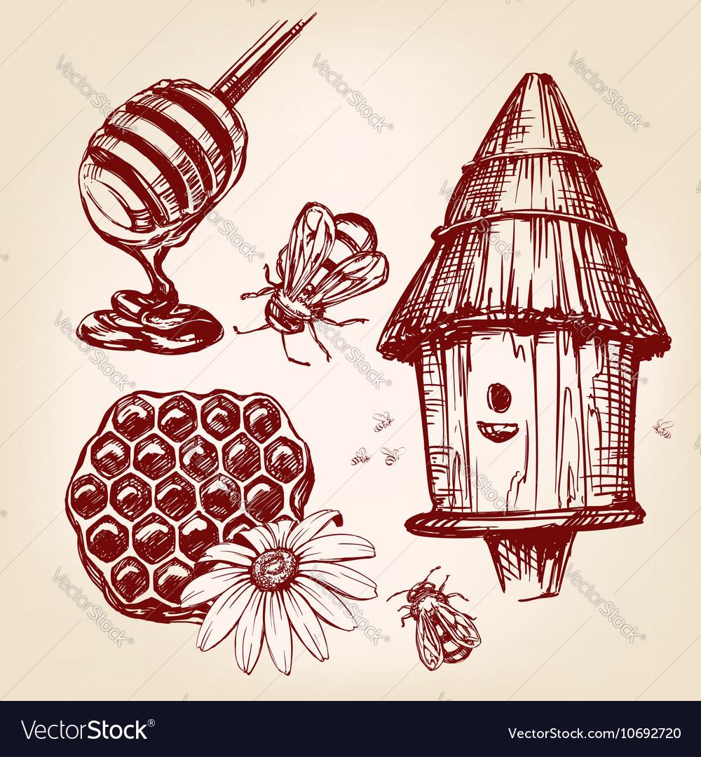 Honey elements set hand drawn llustration